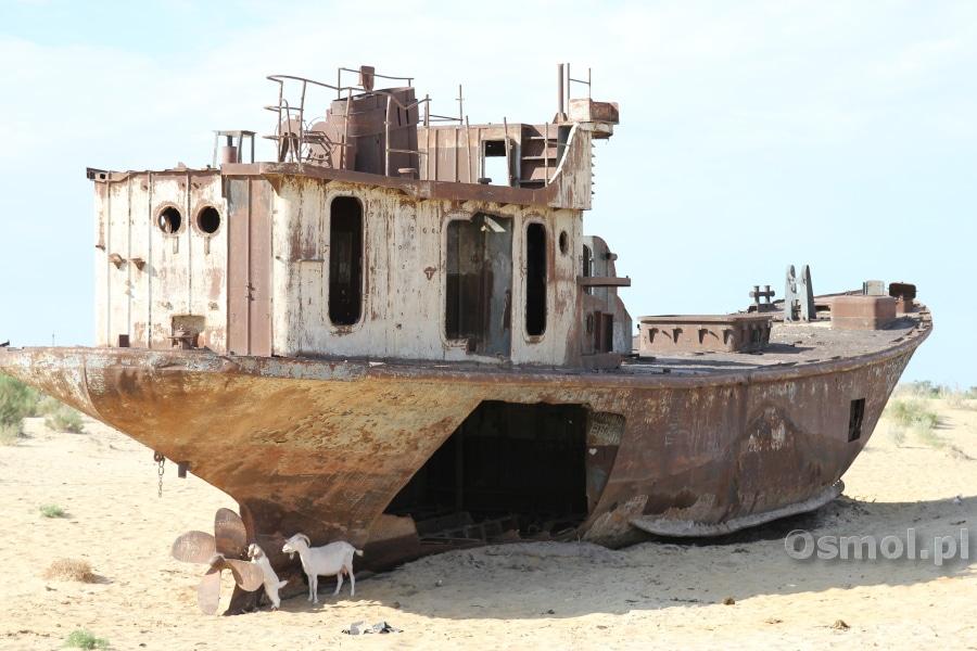 Wrak nad Jeziorem Aralskim