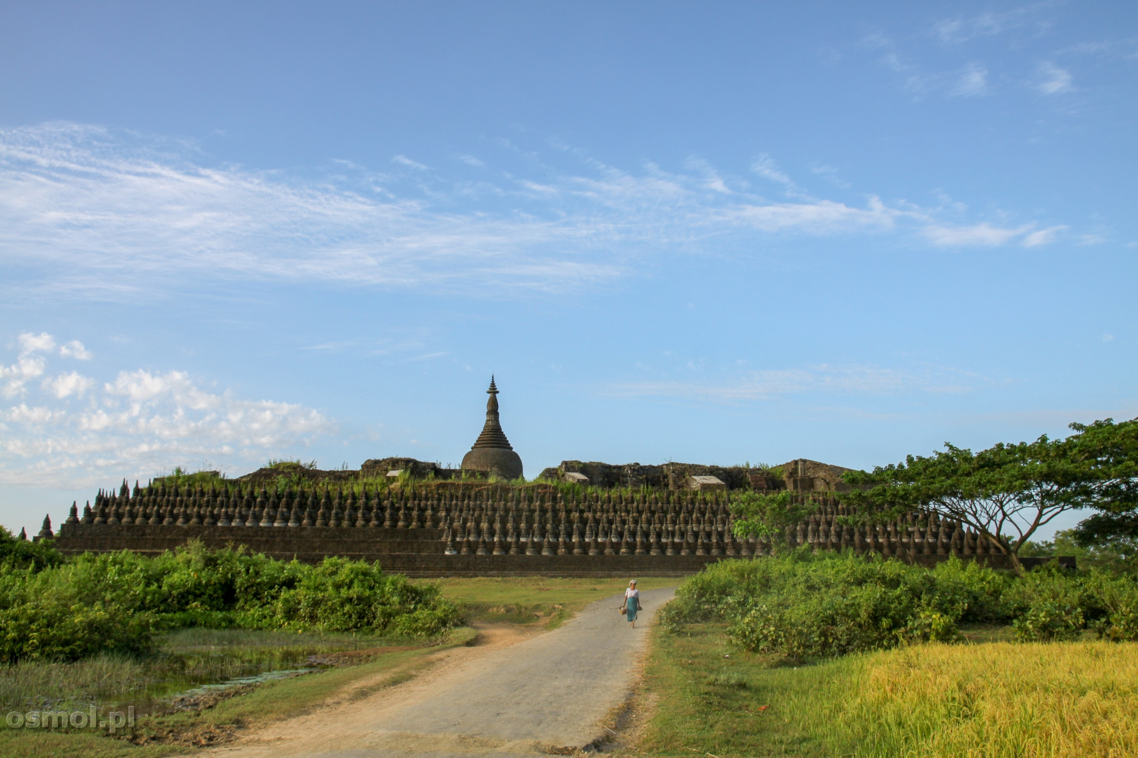 Świątynia Kothaung w Mrauk U