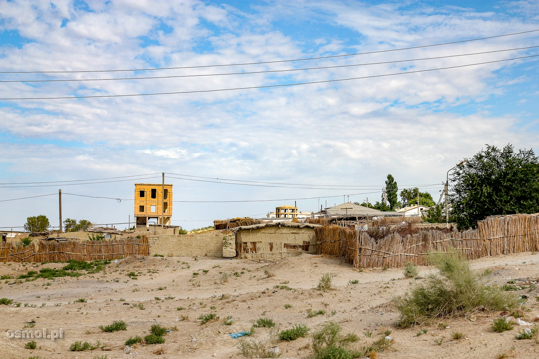 Ruiny w Mujniaku w Uzbekistanie