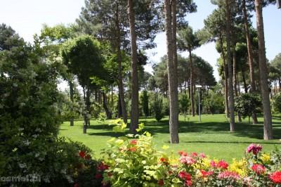 Pięknie przystrzyżona trwa, kwiaty i woda. Z tego parku żal wychodzić