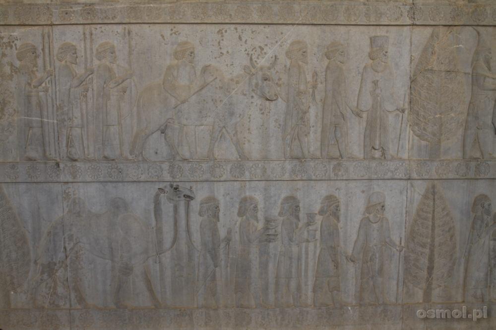 Płaskorzeźby w Persepolis w Iranie
