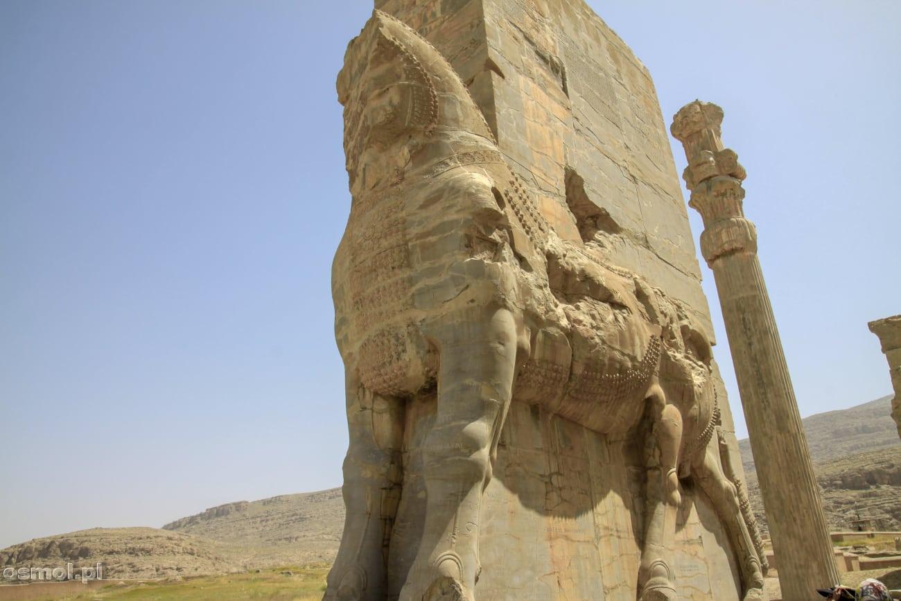 Rzeźba w Persepolis