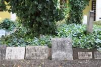 Cmentarz obok synagogii to niecodzienne miejsce