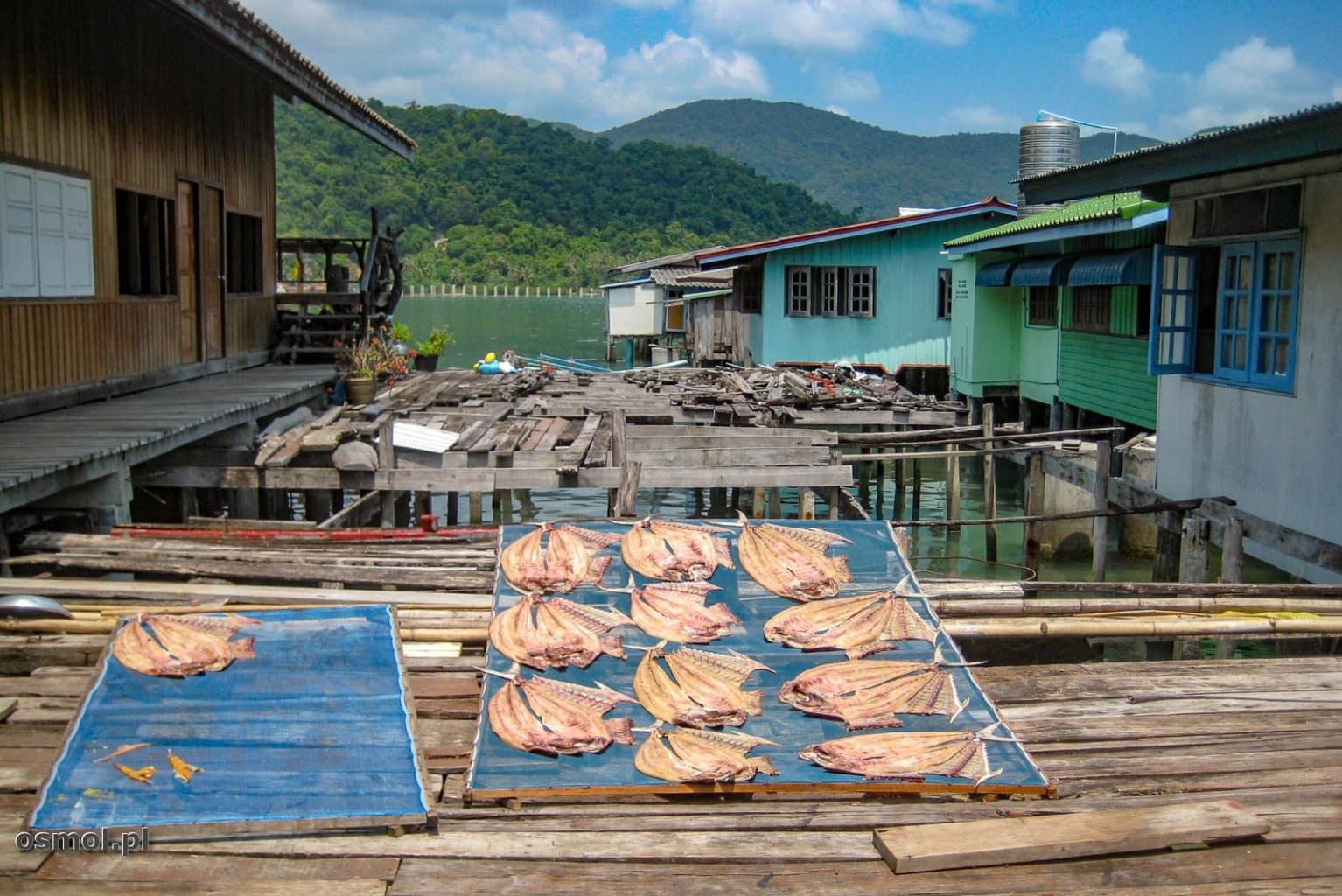 Suszenie ryb w Tajlandii