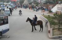Porządku na ulicach strzegą też policjanci na koniach