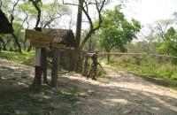 Posterunki uzbrojonych żolnierzy w parku Chitwan to częsty widok. Bronią zwierząt przed kłusownikami