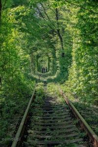 Tunel miłości w Klewaniu Ukraina
