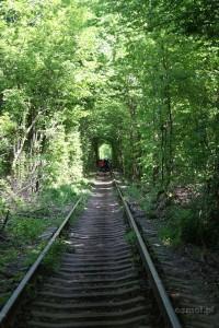 Tunel miłości na Ukrainie. Klewań