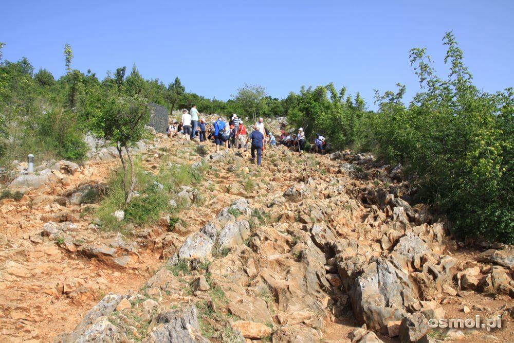 Pielgrzymka podąża na wzgórze objawień