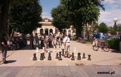 Publiczny mecz szachowy w parku w Banja Luce
