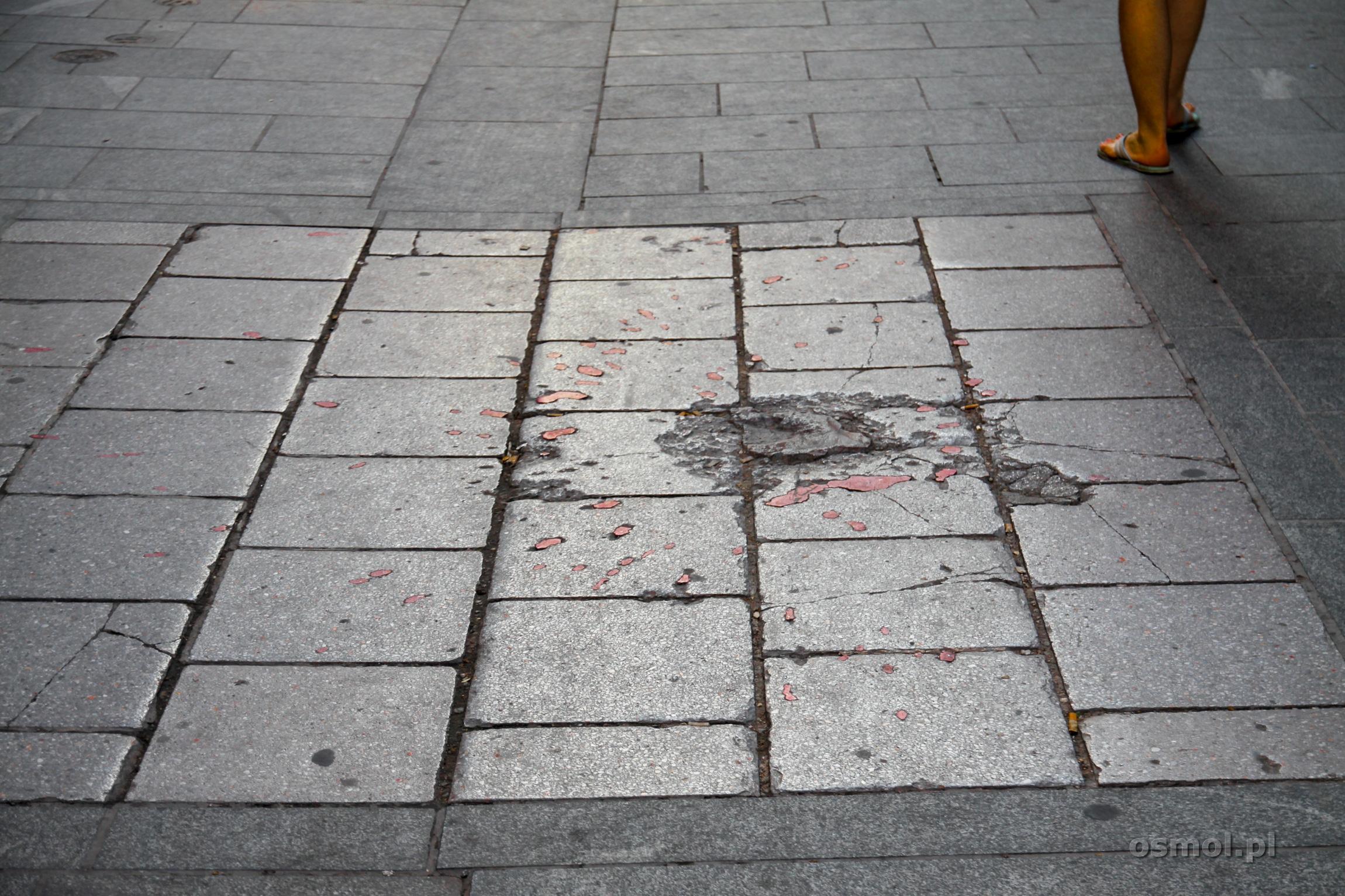 Róża Sarajewa