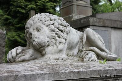 Lew na Cmentarzu Łyczakowskim we Lwowie