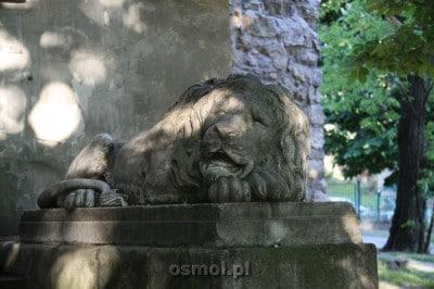 Rzeźba lwa we Lwowie