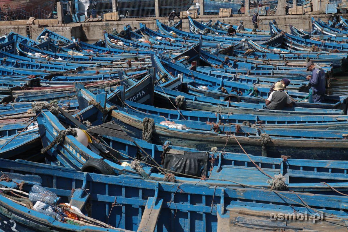 Niebieskie łódki w Essaouirze
