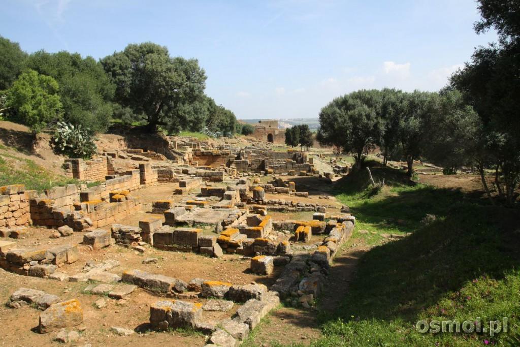 Ruiny wewnatrz twierdzy Szalla Maroko