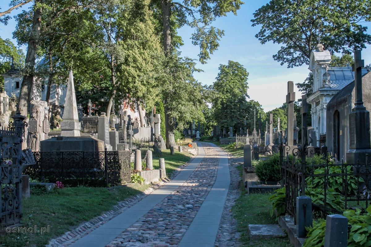 Aleja cmentarna na cmentarzu na Rossie w Wilnie