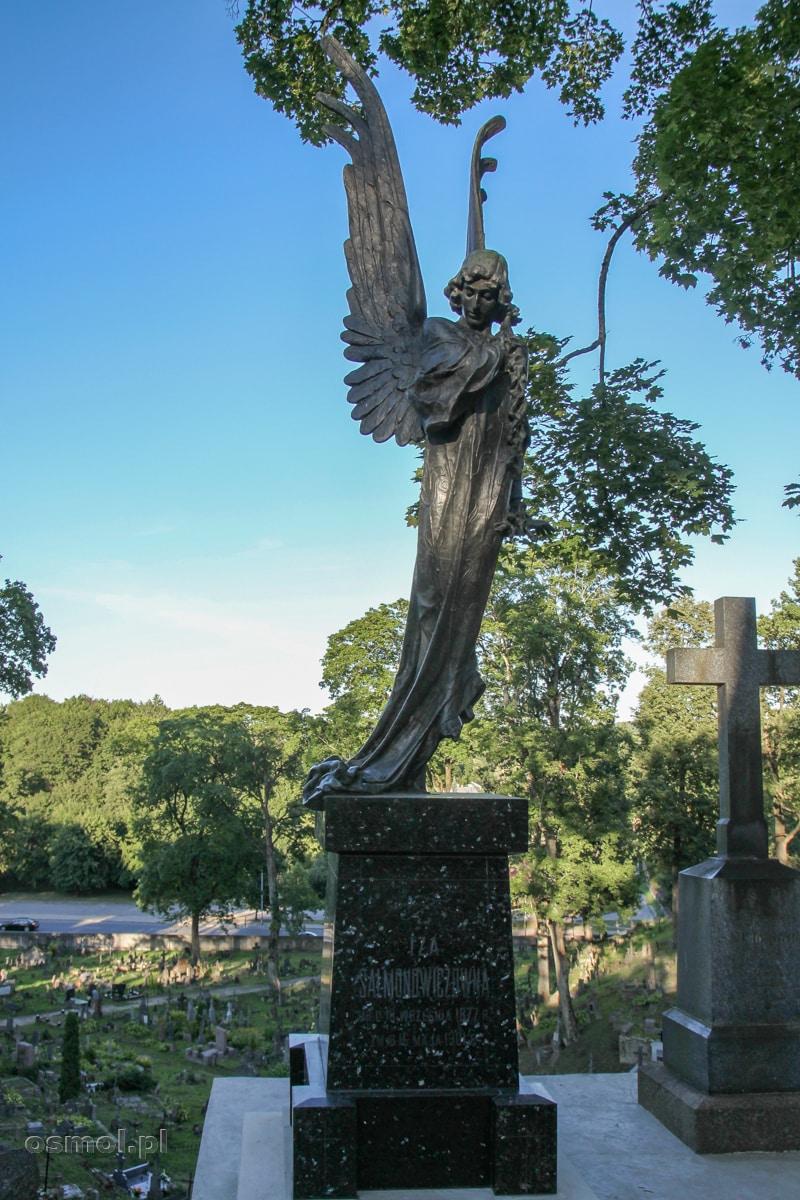 Anioł Śmierci, Czarny Anioł - najbardziej znany pomnik na wileńskiej Rossie - nagrobek Izabeli Salmonawiczówny z 1903 roku.