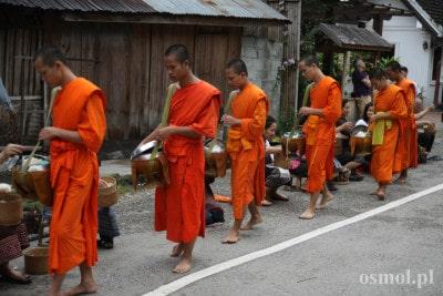 Ceremonia wręczania jałmużny (alms giving ceremony) w Laosie