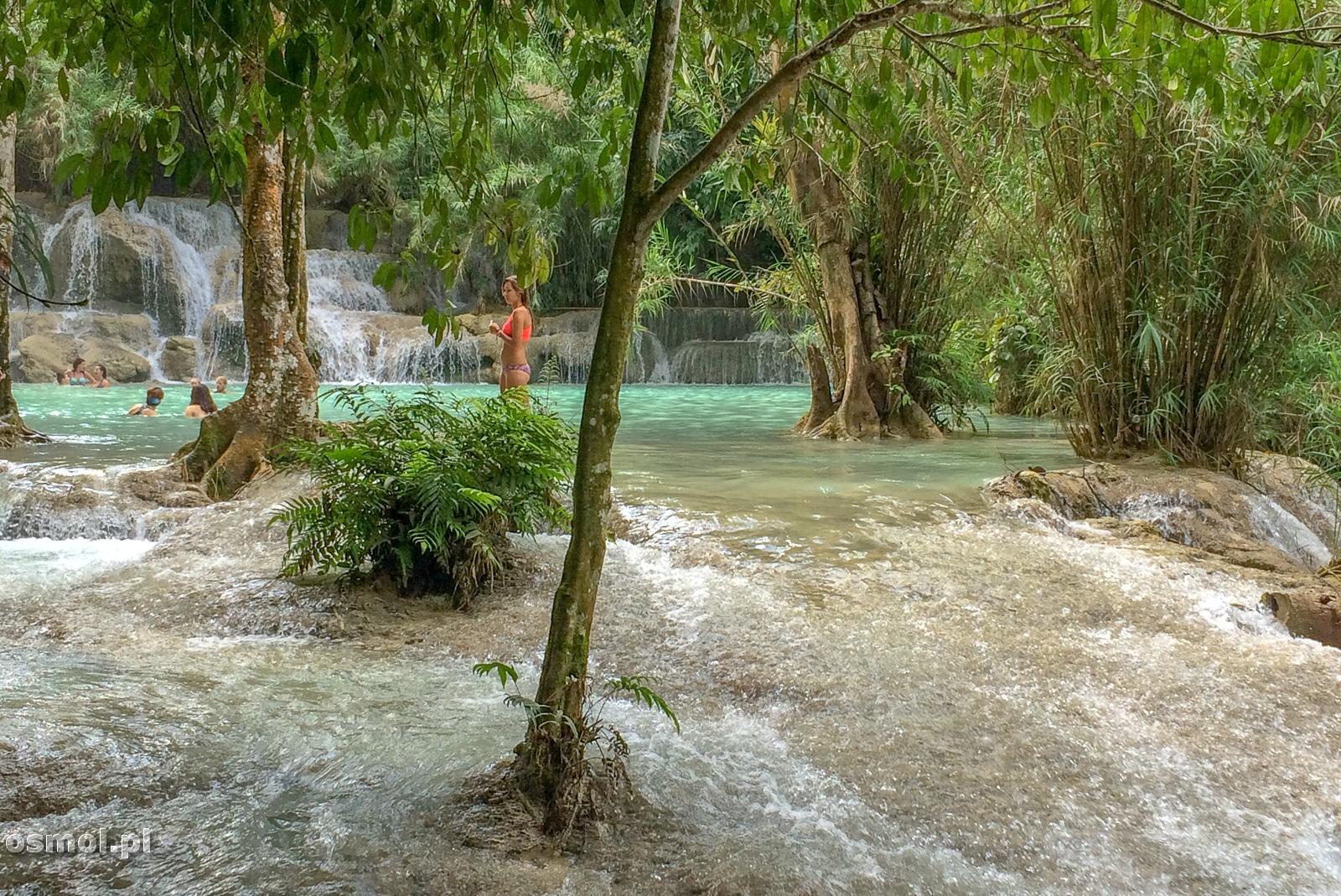 Jeśli nie chcemy kąpieli w głębokiej wodzie, zawsze możemy przejść do płytszej za to bardziej rwącej wody, spływającej do niższych wapiennych basenów.