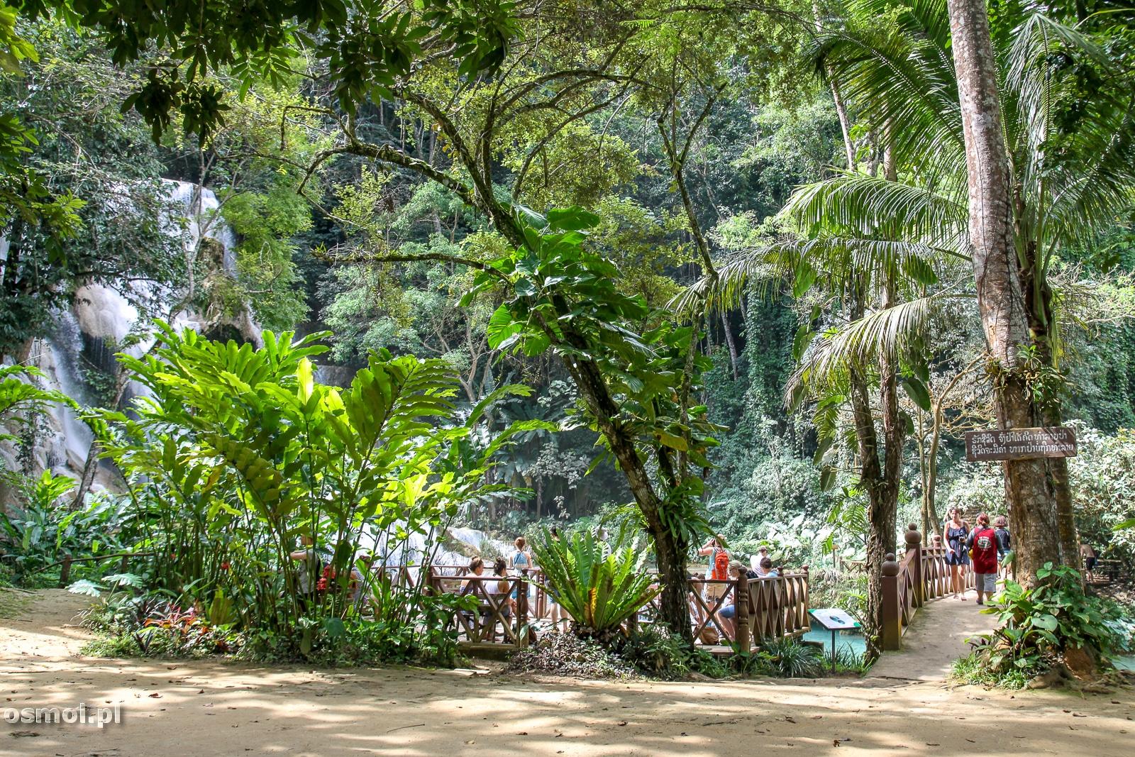Przed wodospadem Kuang Si