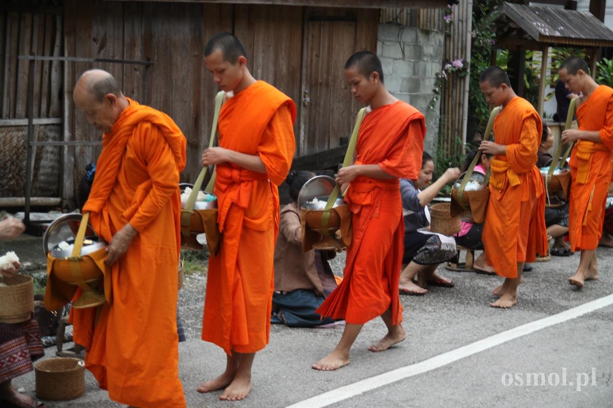 Ceremonia ofiarowania darów w Luang Prabang