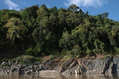 Brzeg Mekongu w Laosie