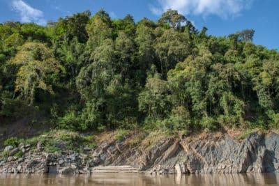 Brzeg Mekongu - soczysta ciemna zieleń, brunatna woda, niebieskie niebo. Cudowny kontrast.