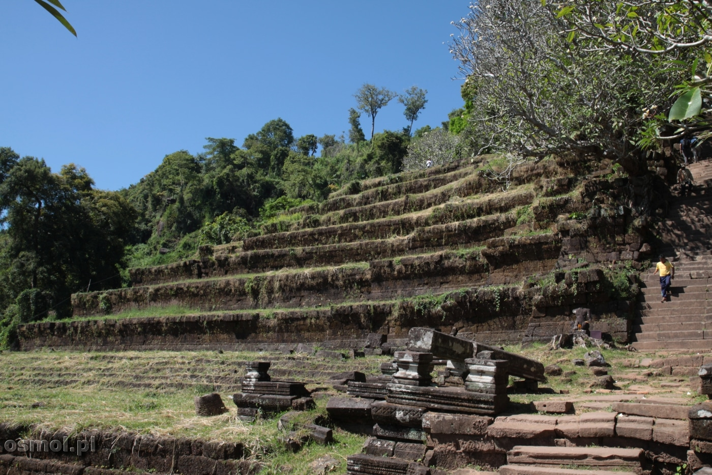 Tarasy przed świątynią Wat Phou