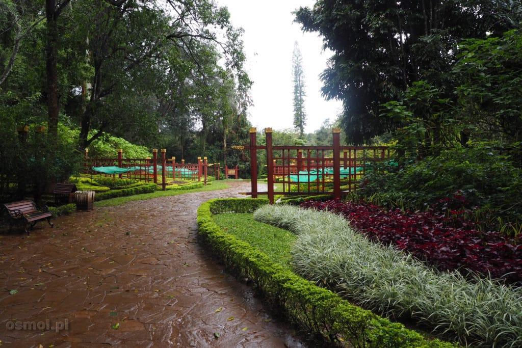 Ogród botaniczny w Pyin Oo Lwin - Birma.