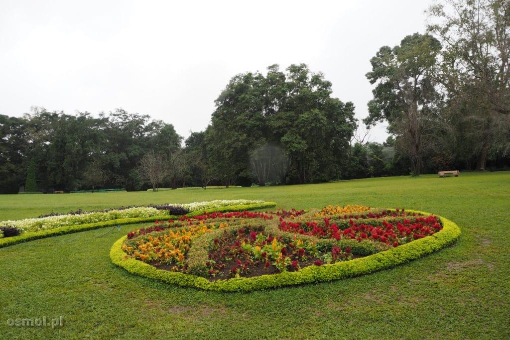 Ogród botaniczny w Pyin Oo Lwin - Birma