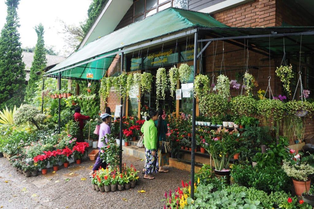 Sklep z roślinami w ogrodzie botanicznym w Birmie