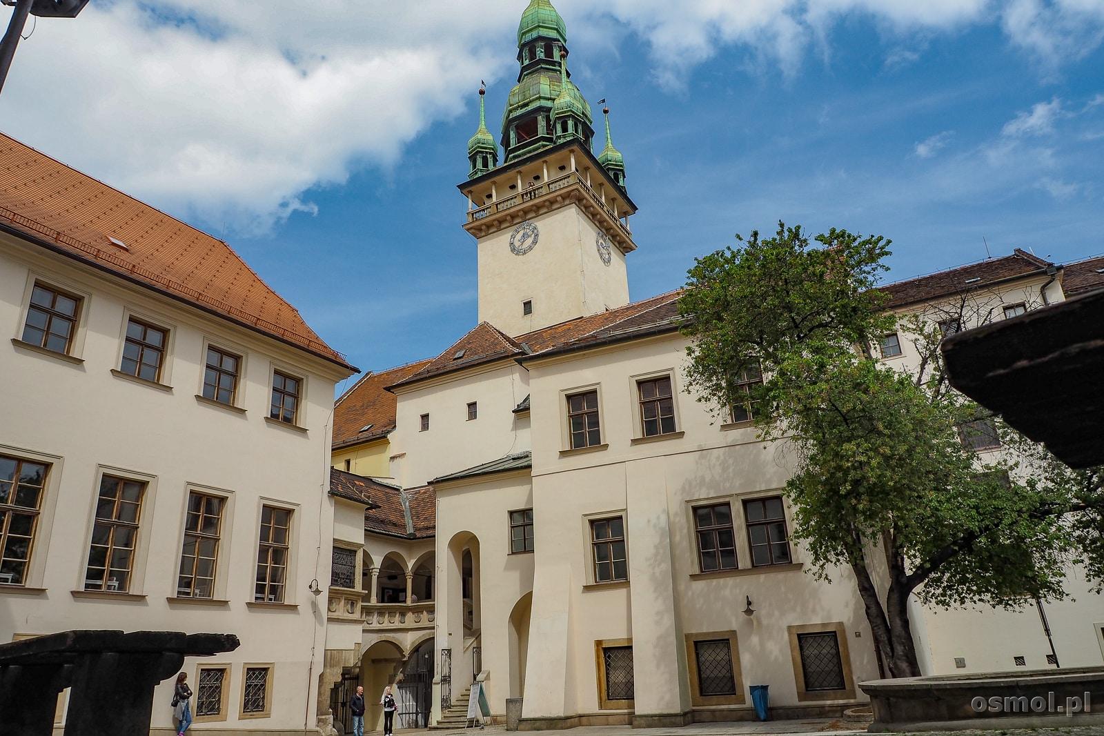 Stary ratusz Brno