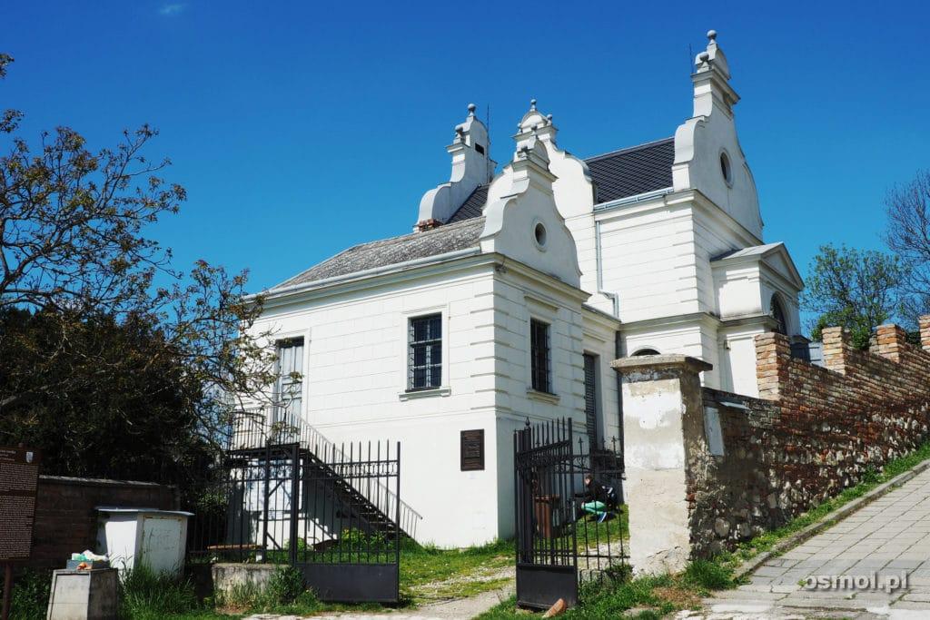 Synagoga w Mikulovie Czechy