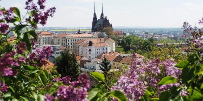Widok na Brno