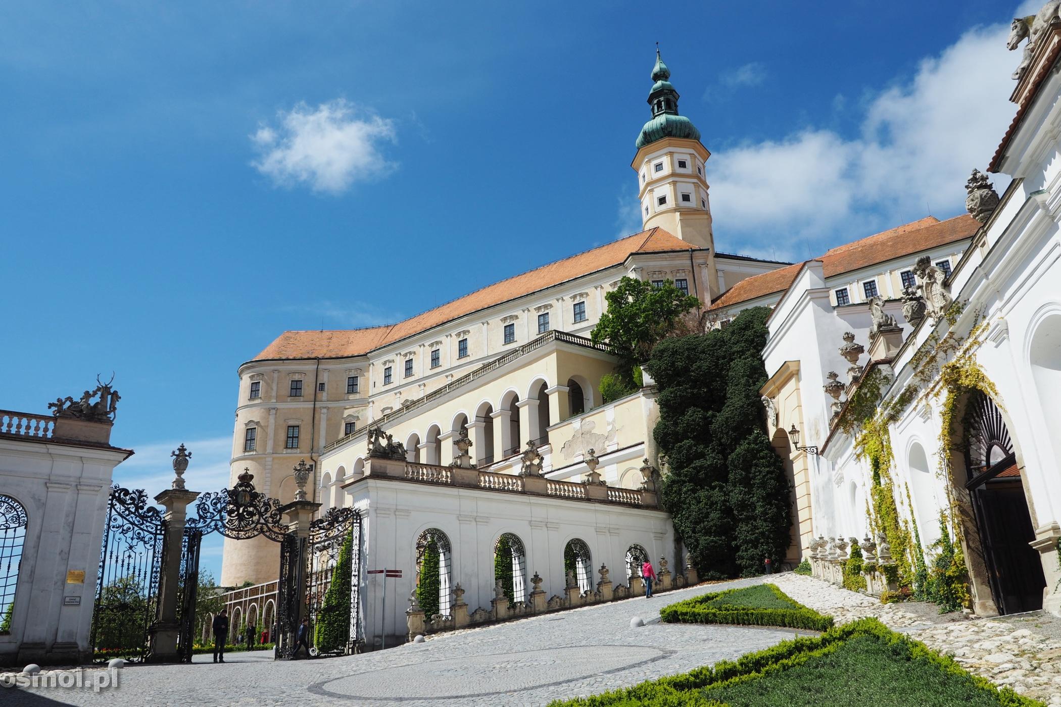 Widok na Pałac w Mikulovie