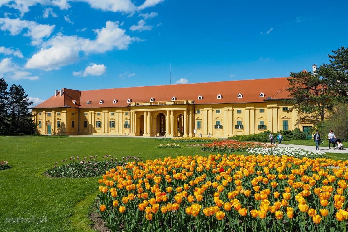 Wszystkie budynki kompleksu pałacowego otoczone są kwietnymi r