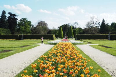 Park pałacu w Lednicach Czechy