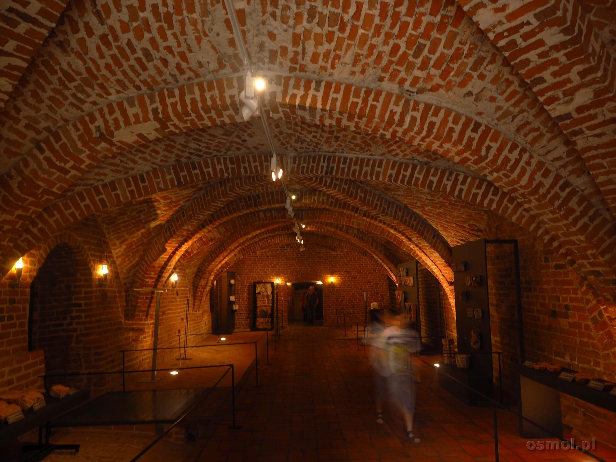 Piwnice zamkowe w Malborku