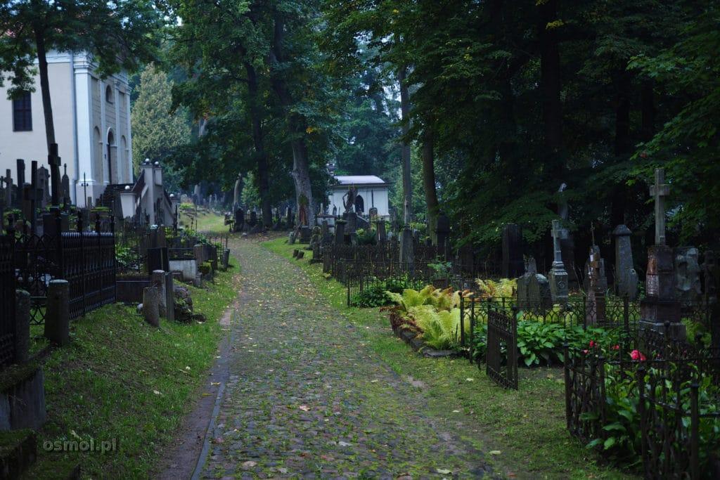 Alejka na Cmentarzu Bernardyńskim na Zarzeczu