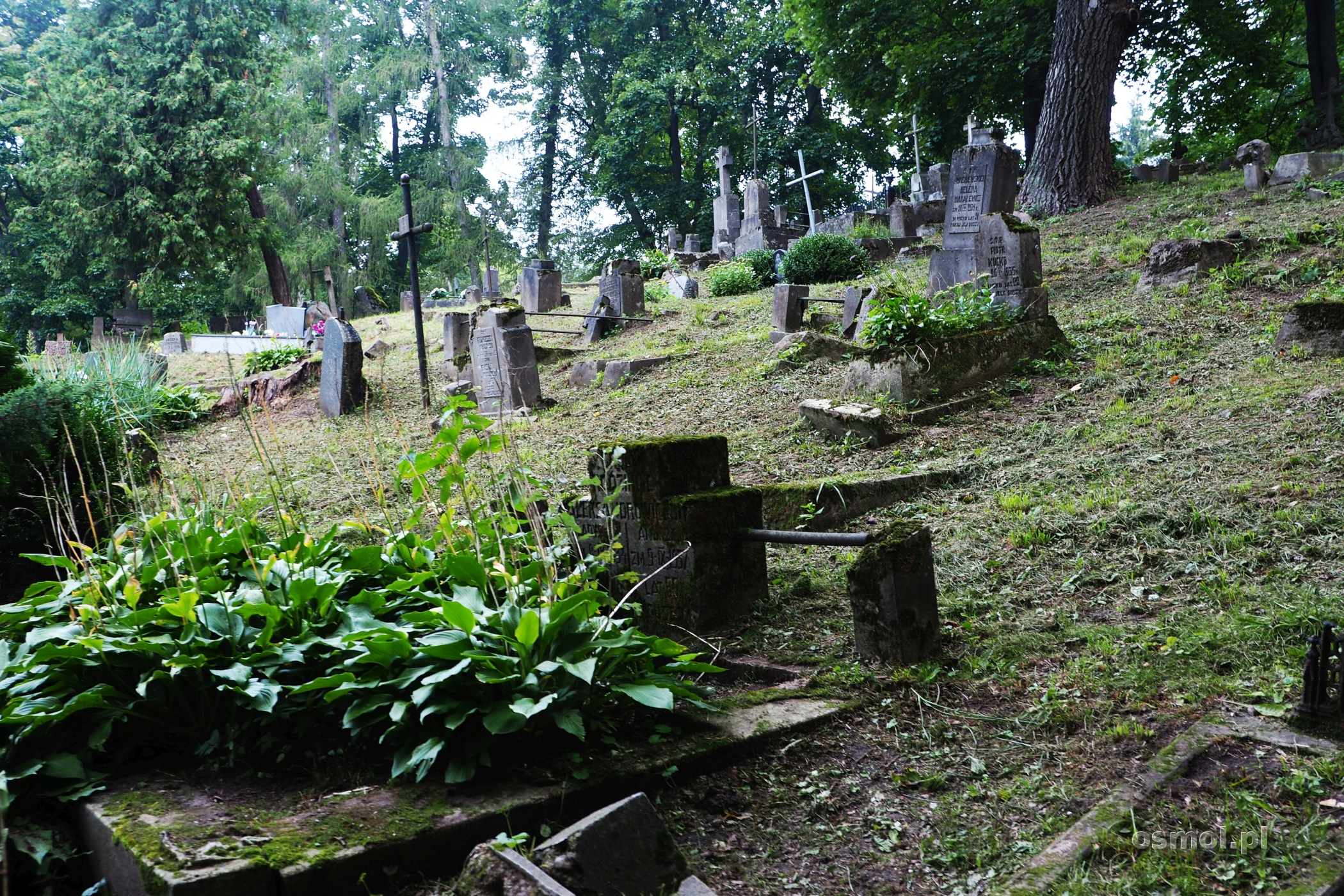 Cmentarz Bernardyński w Wilnie na Zarzeczu