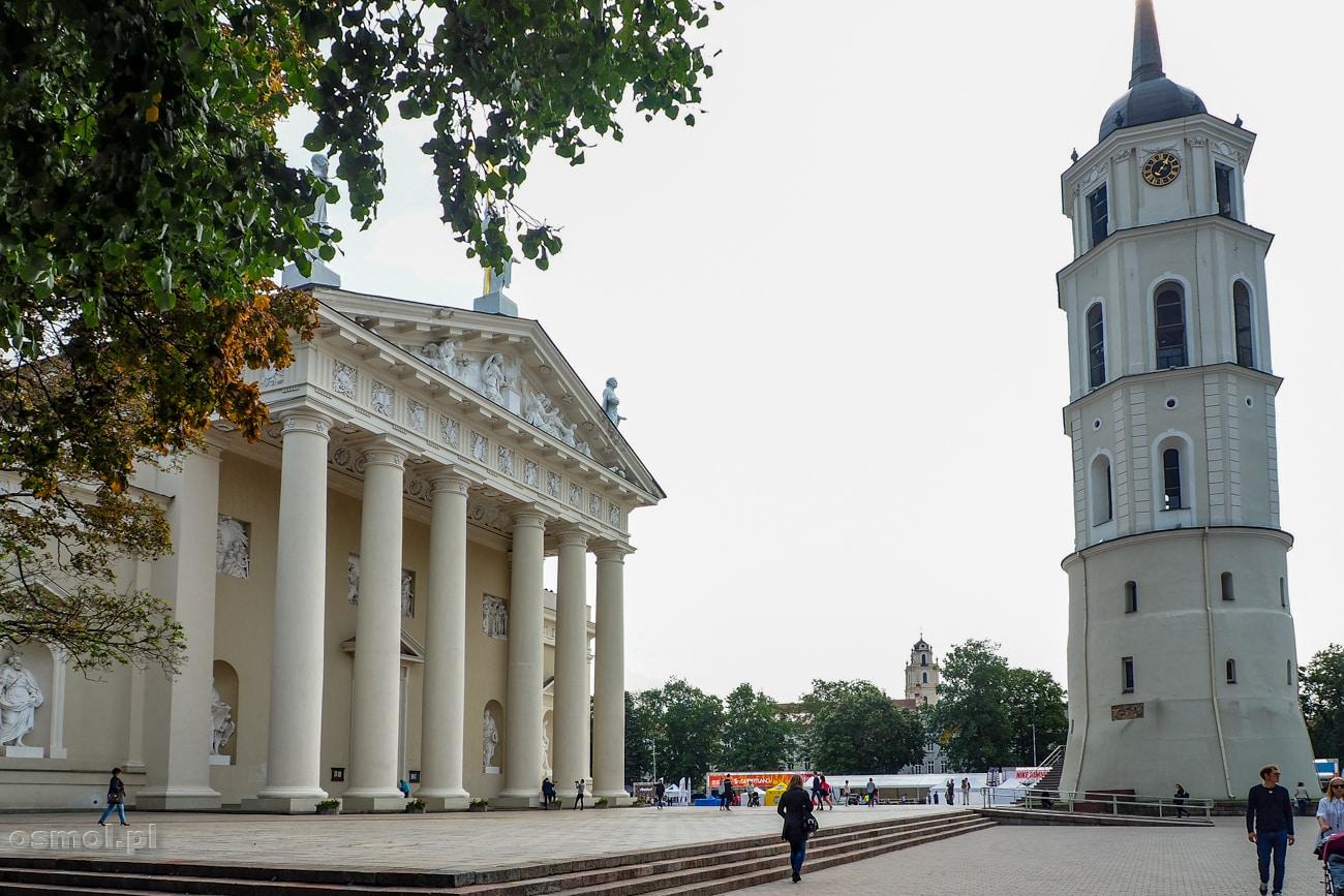 Wieżą dzwonnicza katedry w Wilnie