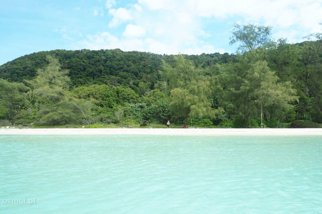 Widok na plażę podczas pływania w wodzie