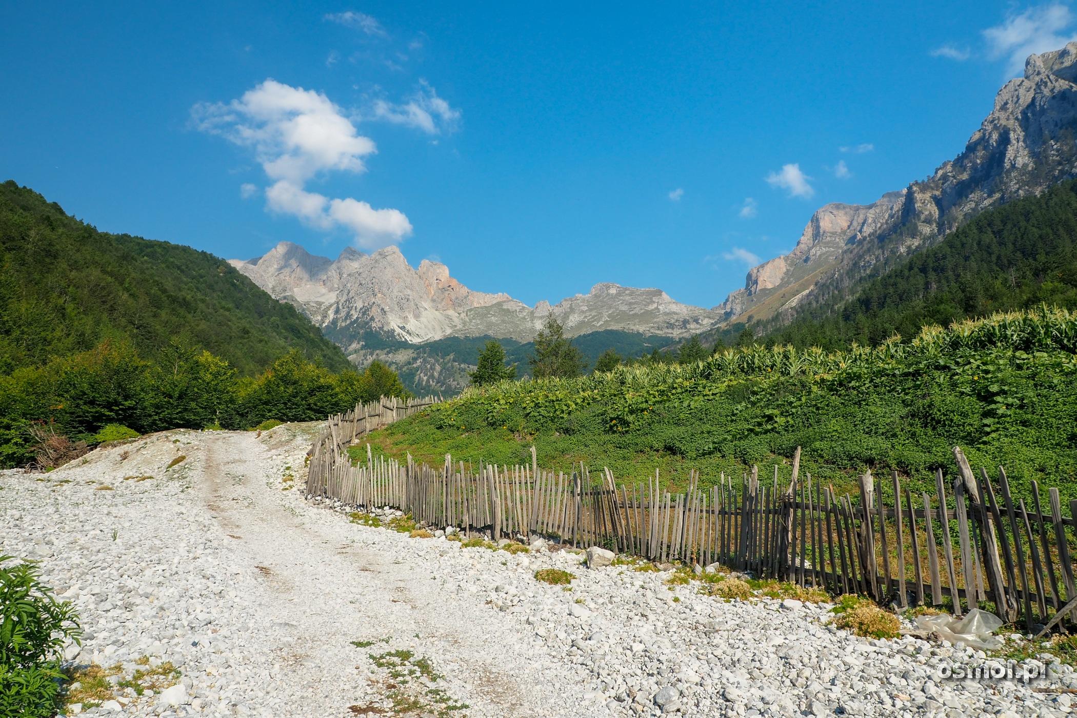 Początkowy odcinek szlaku na Maja e Rosit - Góry Przeklęte w Albanii