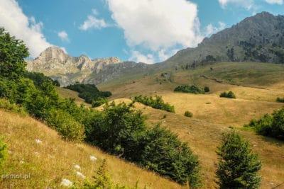 Łąki w Górach Przeklętych