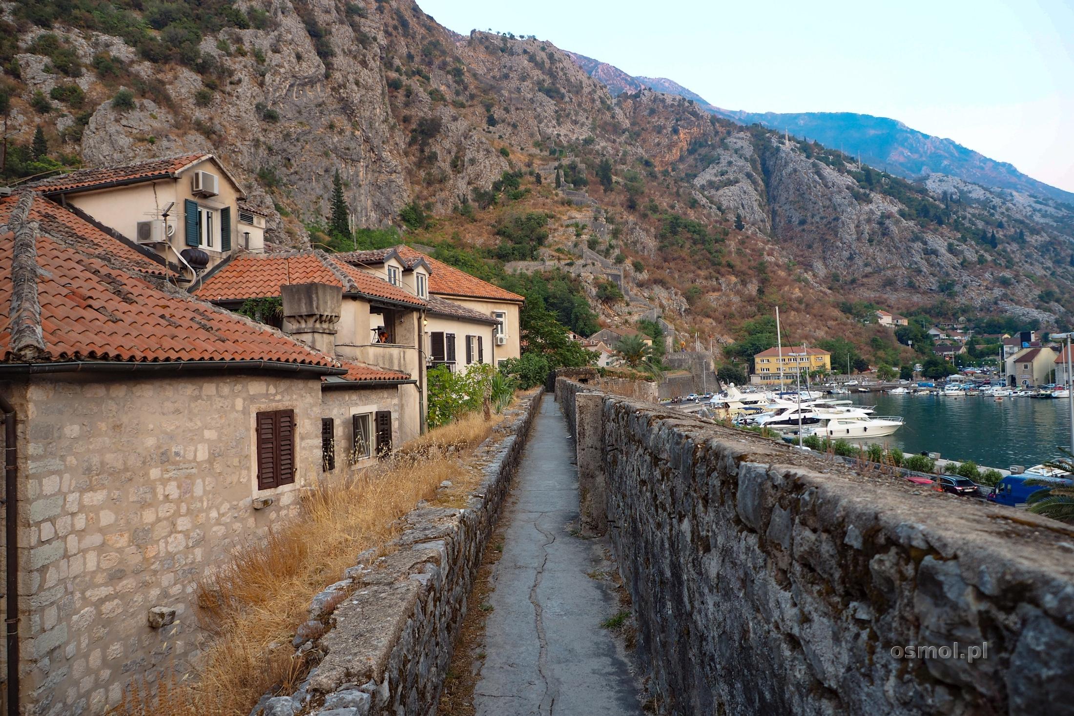 Kotor spacer po murach miejskich