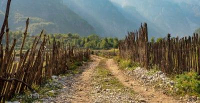Płot z patyków w Albanii