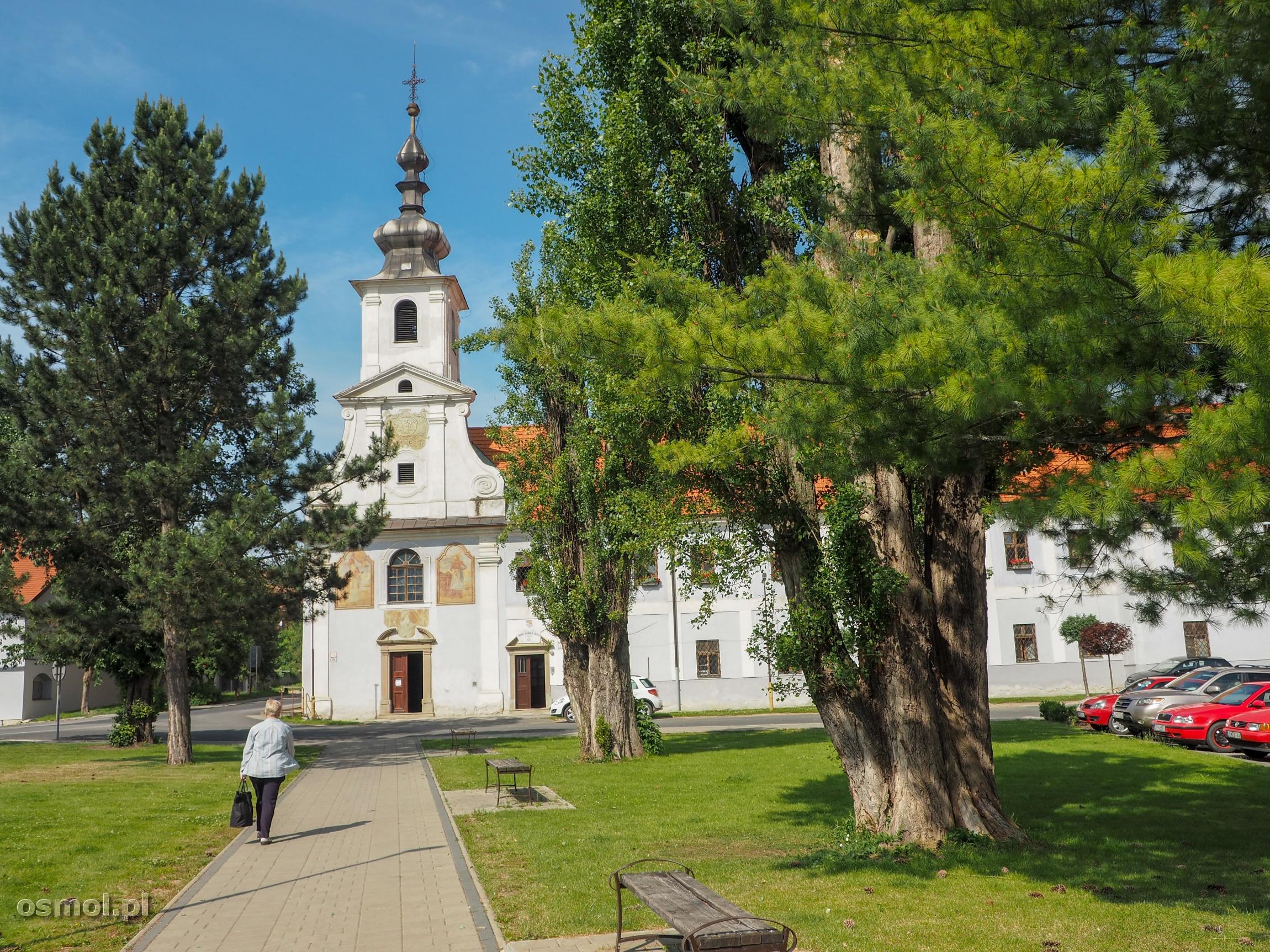 Mały park w Spiskim Podgrodziu.