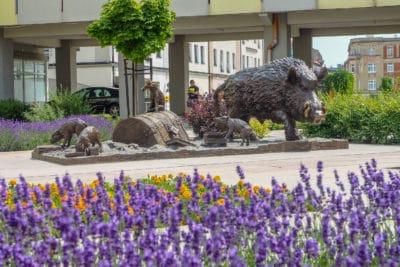 Pomnik Dzika w Świdnicy