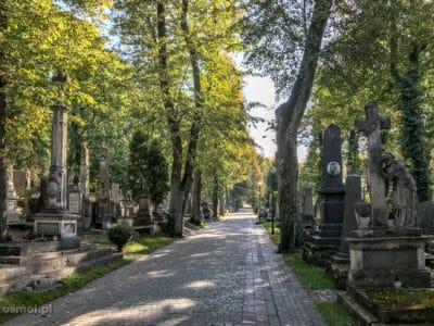 Alejka na Cmentarzu Łyczakowskim we Lwowie
