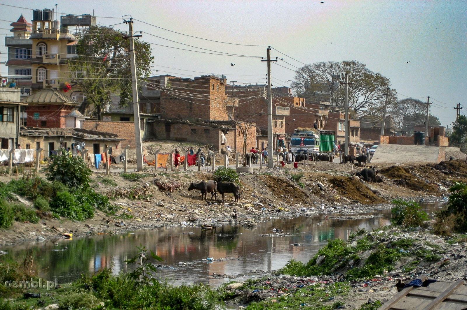 Strumyk, który jest wysypiskiem śmieci. Katmandu